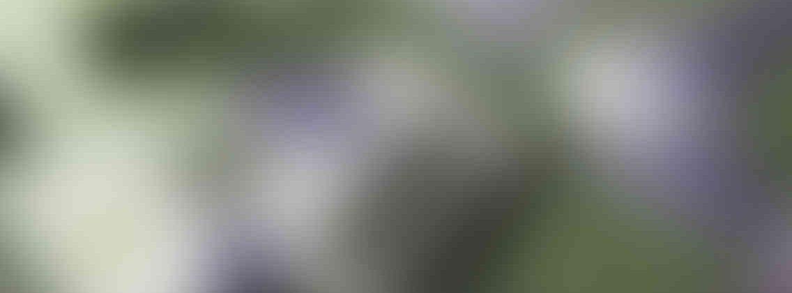http://gozdefidan.com/wp-content/uploads/2013/03/relay_slide_3_v01-1136x420.jpg